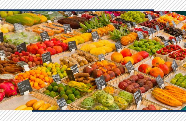 Exportação de frutas: confira alguns documentos necessários!