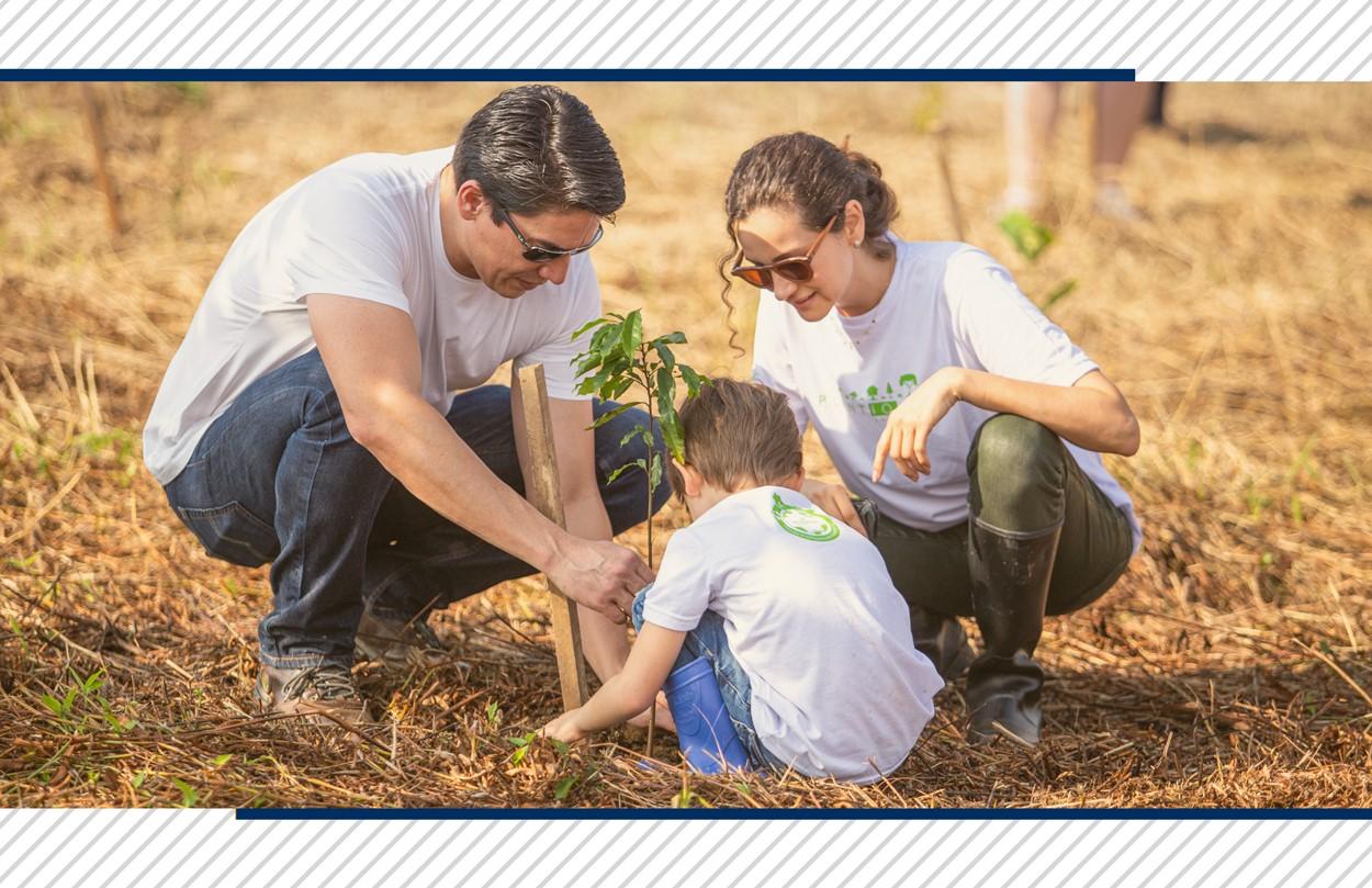 Plantio DC: projeto socioambiental que busca transformar o futuro das próximas gerações!