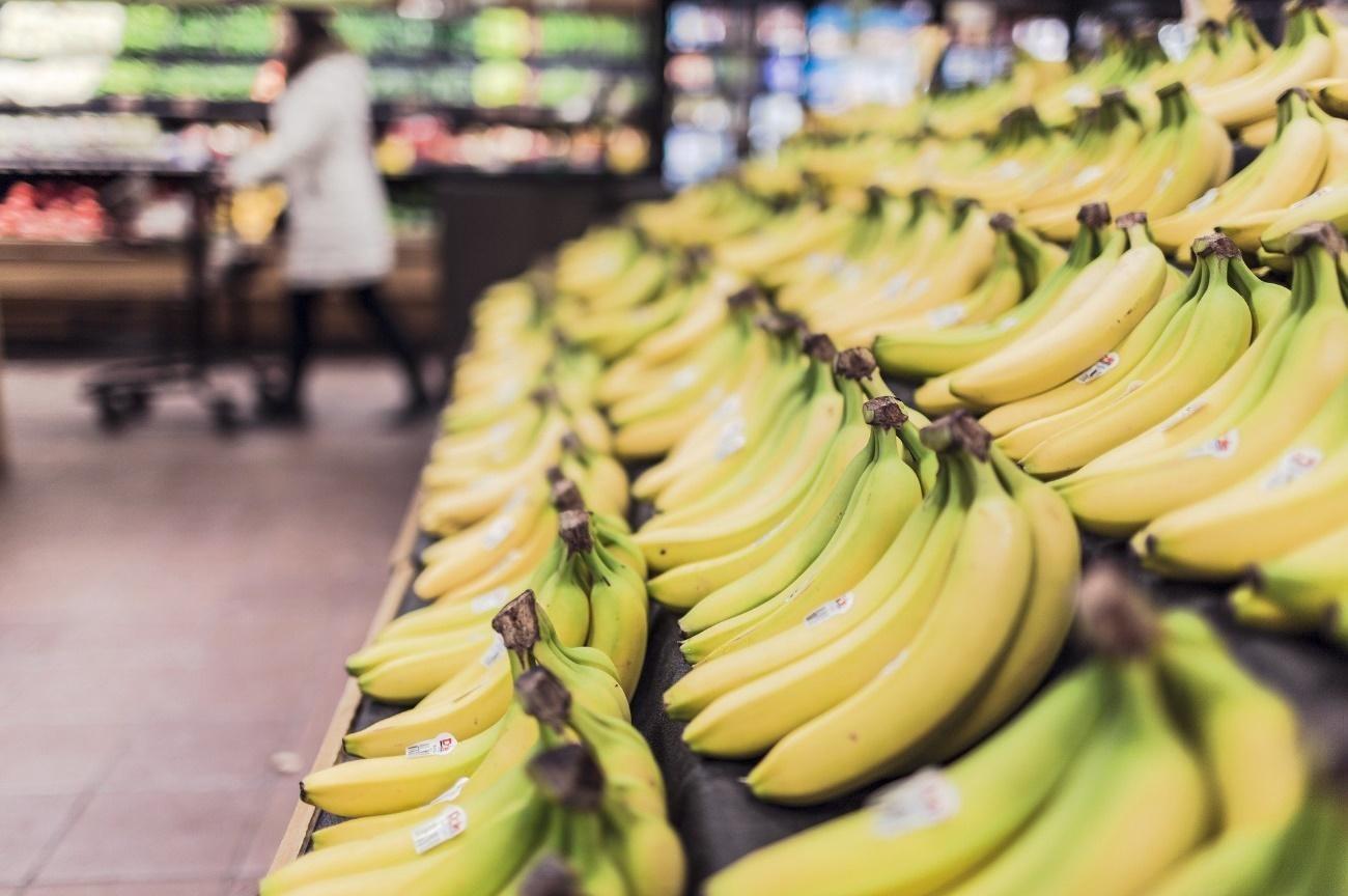 Exportação de frutas para Europa: quais são as especificações em relação aos outros mercados?