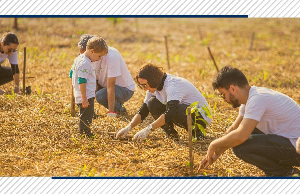 Desenvolvimento Sustentável: entenda como ele é trabalhado na DC Logistics Brasil!