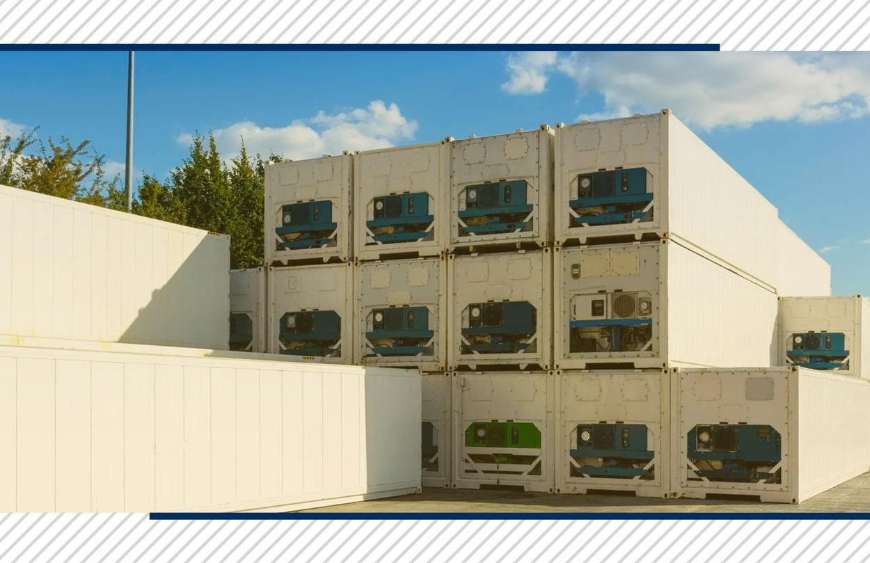 Expertise DC Logistics Brasil: Fresh and Frozen