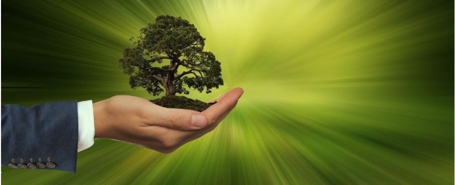Você sabe qual é o impacto das práticas ESG no Comércio Exterior?